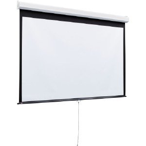 Draper Luma 2 Manual Wall And Ceiling Projection Screen 206013